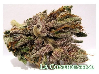 LA konfidentiell