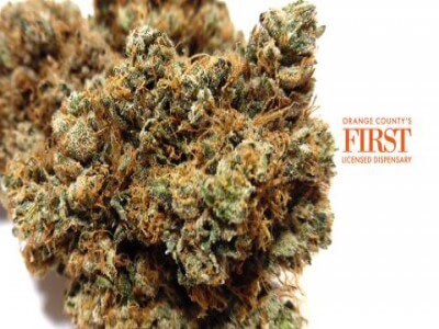 FLI CONCENTRATES Fruktiga stenar (500 och 1000 mg)